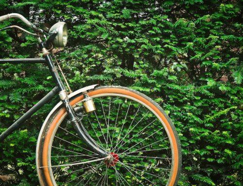 Trasportare i bambini in bicicletta: cosa fare