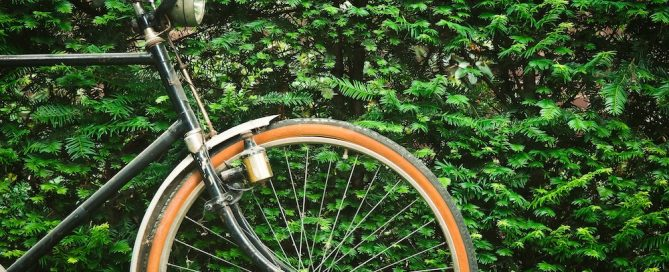 trasportare-bicicletta-bambino